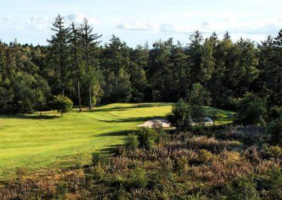 natur_golf